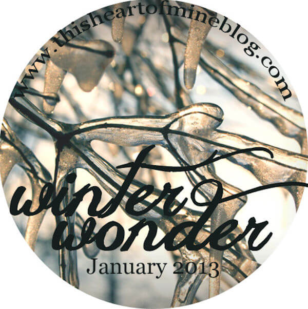 winterwonder600x600 copy